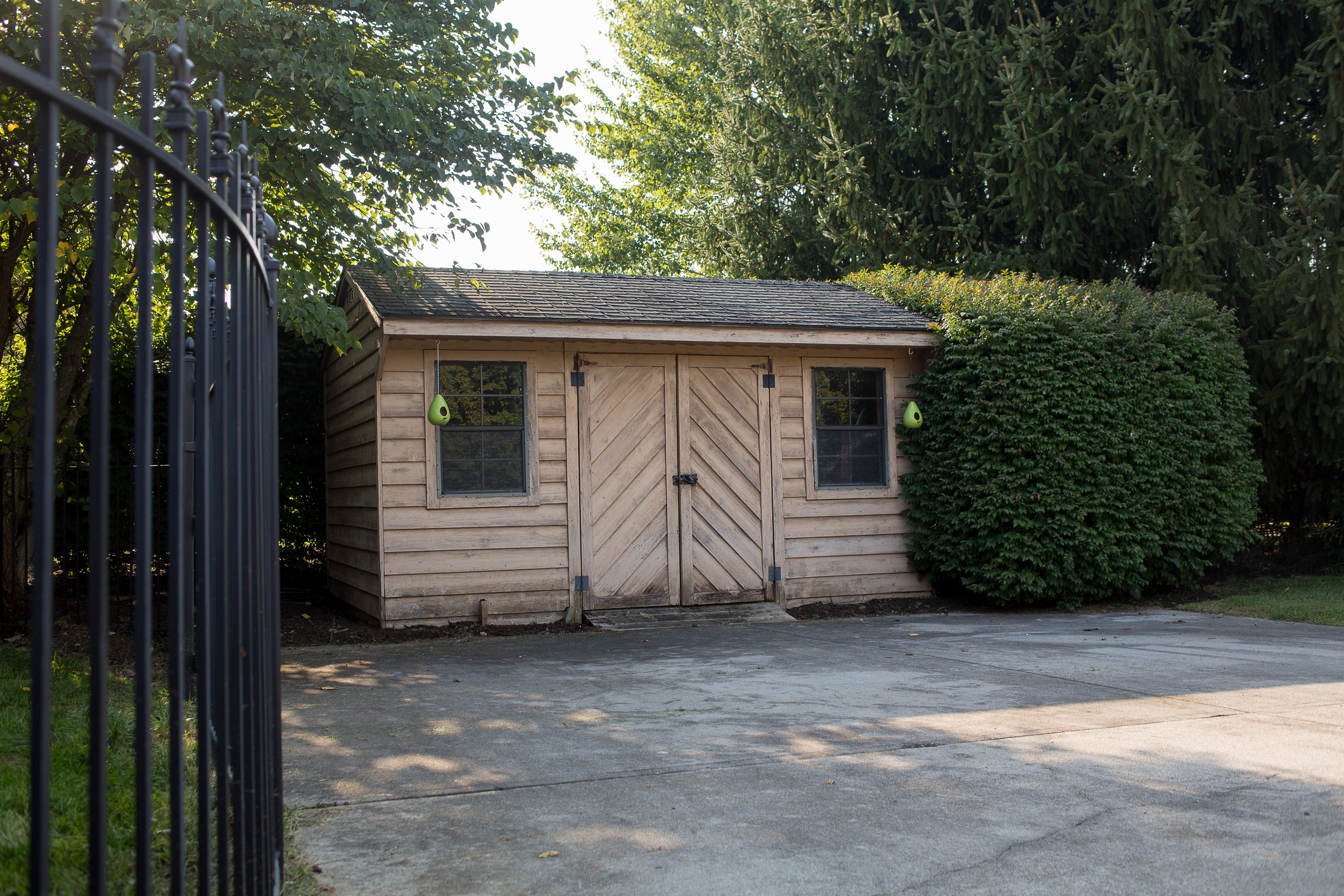 Backyard shed for storing pool chemicals.